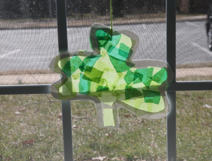 shamrock in window